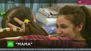 Интервью Тамары Обориной, мамы Ирины Банниковой| Хромая лошадь 10 лет спустя