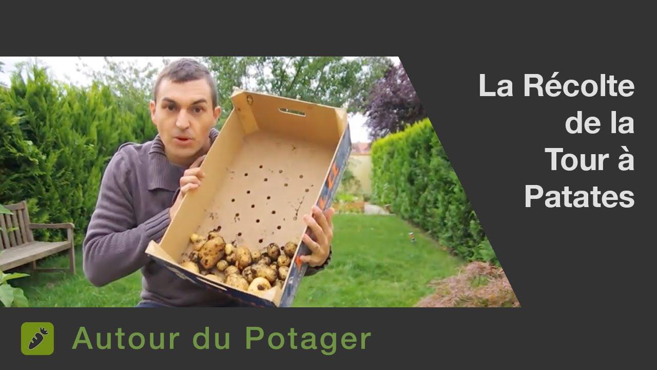 La r colte de la tour pomme de terres youtube - Pomme de terre recolte ...