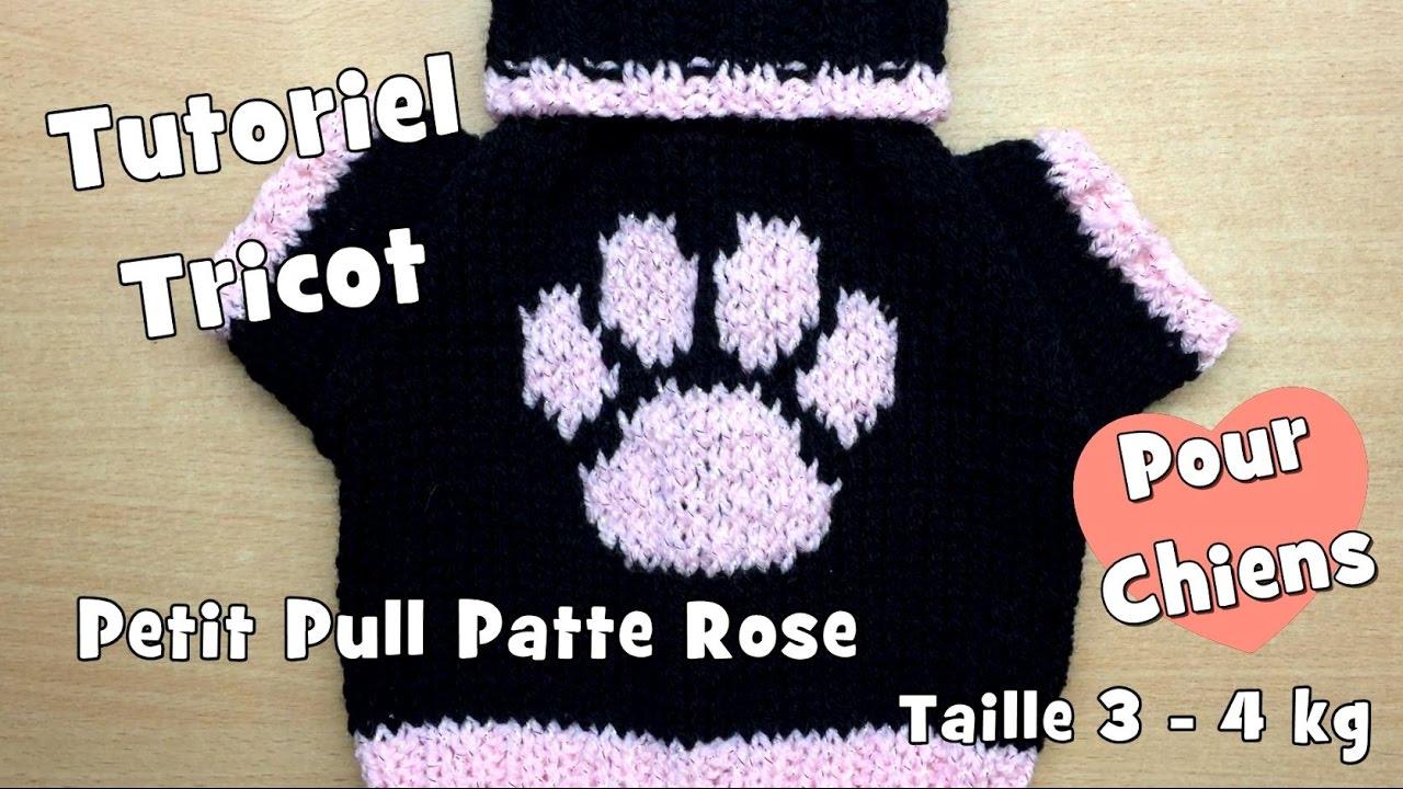tutoriel tricot petit pull patte rose pour chiens de taille moyenne 3 4kg youtube. Black Bedroom Furniture Sets. Home Design Ideas