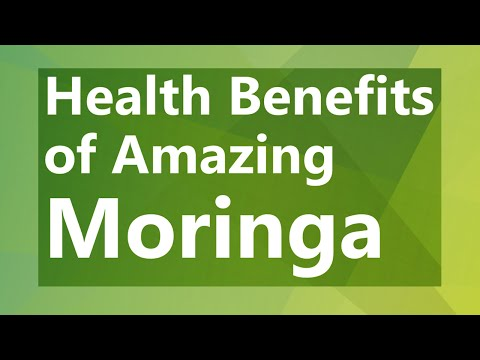 Health Benefits of Amazing Moringa - The Drumstick Tree - Super Food Moringa