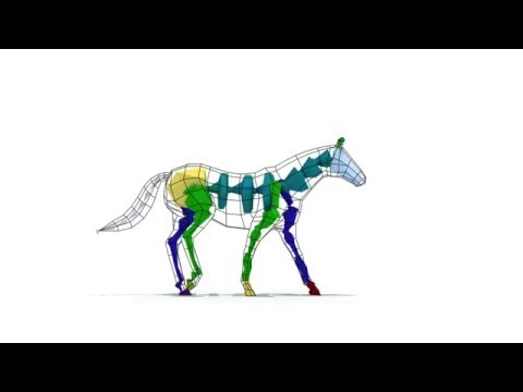 Horse Walk Cycle 3D Animation (3dsmax,rigging biped)