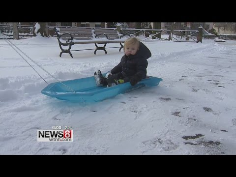 New Haven's Wooster Square spent Sunday digging out & having fun