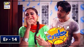 Jalebi Episode 14 - ARY Digital Mar 16