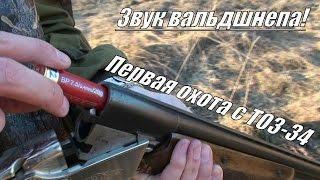 Первый раз с ТОЗ-34 на охоту (на вальдшнепа) Выстрел влет!(Разведка и первый день охоты на вальдшнепа в Калужской области с ТОЗ-34 12 калибра. Как звучит