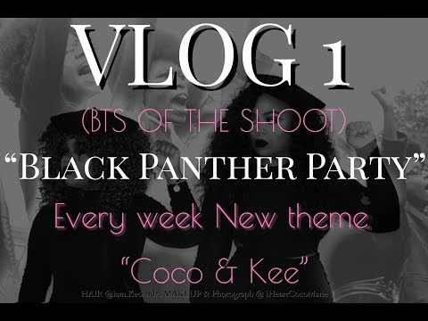 """Blog 1 Week 1 """"Black Panther Party"""""""