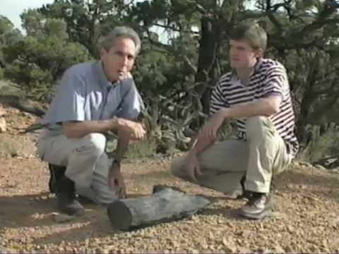 Uranium Halos are Proof Noah Flood Laid the Sedimentary Layers