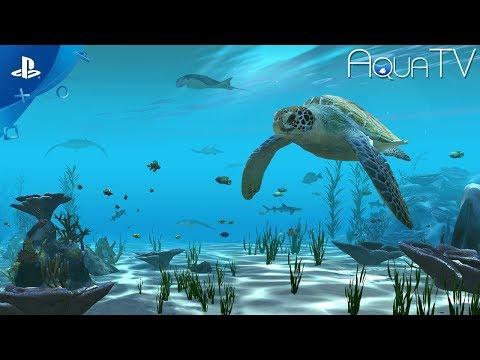 Aqua TV - Official Trailer | PS4
