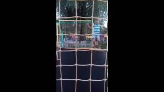 Прыжки на батуте(, 2016-08-29T15:17:07.000Z)