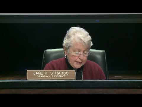 FCPS School Board Public Hearing FY20 Budget 1-28-19