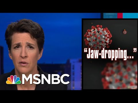 Coronavirus Crisis Compounded By Disastrous Trump Admin Decisions   Rachel Maddow   MSNBC