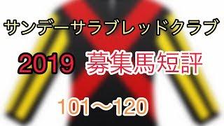 サンデーサラブレッドクラブ 2019 募集馬 短評 101〜120
