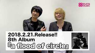 a flood of circle『a flood of circle』コメント動画