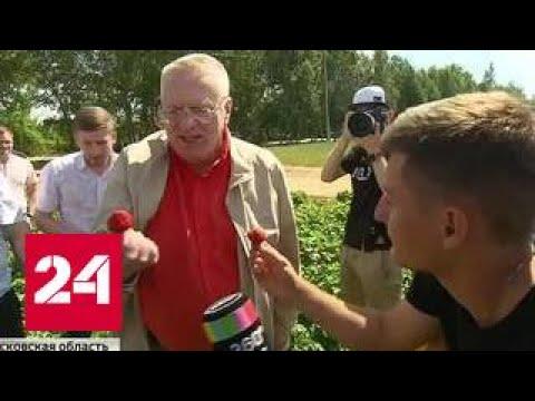 Жириновский на клубнике никому не давал работать рядом