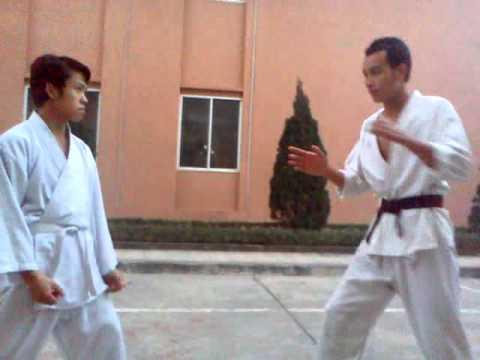 Karate cho người mới học tại ĐHCNHN