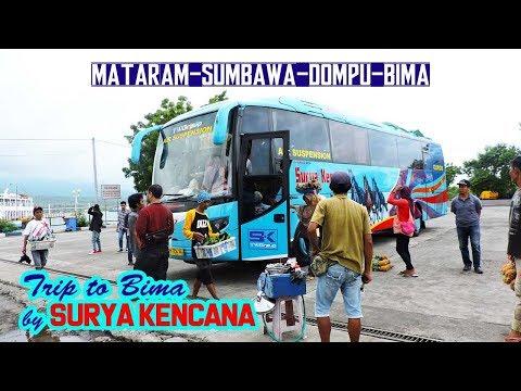 TRIP TO BIMA Naik Bus SURYA KENCANA   Mataram—Sumbawa—Dompu—Bima