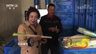 《生财有道》 20201216 咱们家乡有特产——山东章丘:特色产品特色财  CCTV财经 - YouTube
