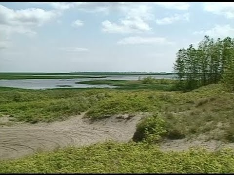 Long Point World Biosphere Reserve -- Park & Wetlands
