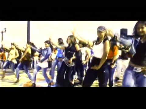 Mala Lagi Hichki(Hindi Movie Song -Risk)