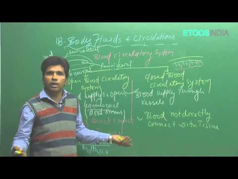Body fluids and its circulation by M. Asad Qureshi (MAQ) (ETOOSINDIA.COM)