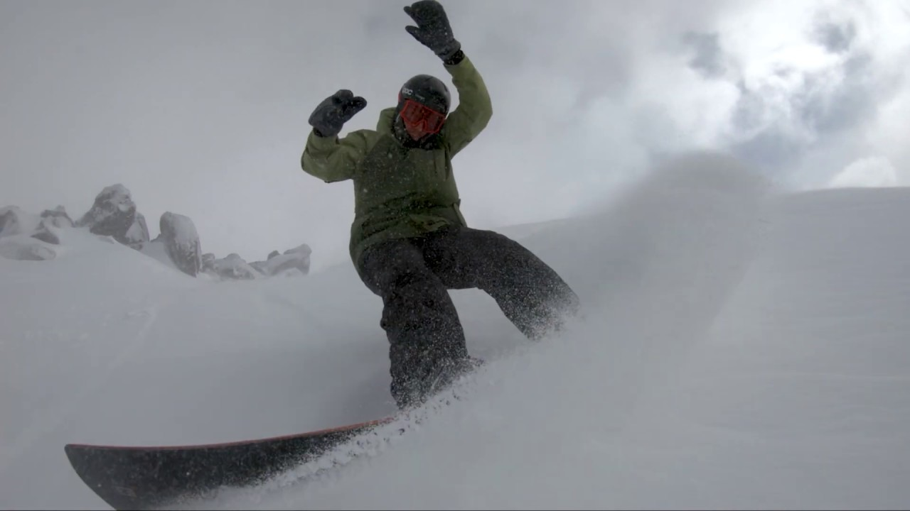 Freshies! 20cm Overnight & More On The Way...