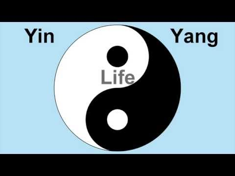 Yin Yang Life