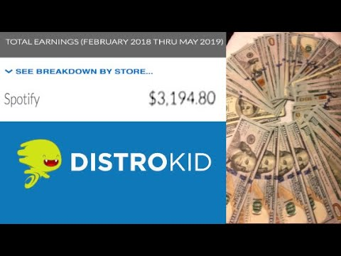 How Much Distrokid Paid Me for 1 Million Plays on Spotify!