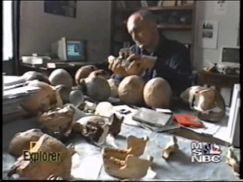 National Geographic | Explorer - Dmanisi Hominid Archaeological Site