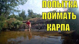 """""""Попытка словить карпа""""/ Днепр Запорожье"""