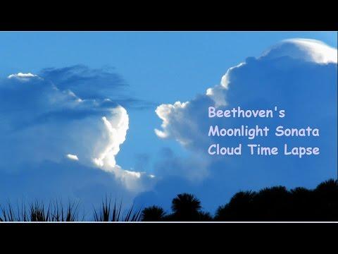 Moonlight Sonata By Beethoven -  A Nature Meditation