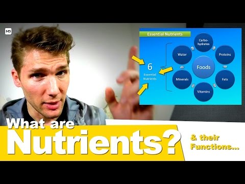 Nutrients and Their Functions - You Are What You Eat: Crash Course #1