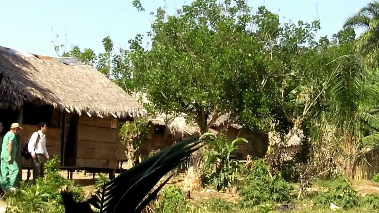 Jungle Property For Sale Peru