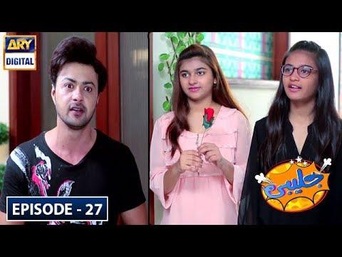 Jalebi Episode 27 - 20th July 2019 - ARY Digital Drama