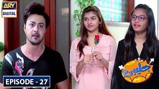 Jalebi Episode 27 - 20th July 2019 - ARY Digital