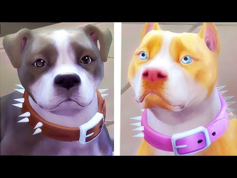 Sims  Cats And Dogs Pitbulls