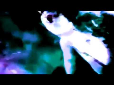 Grey People - Lizard Man Dance [Nerang Recordings]