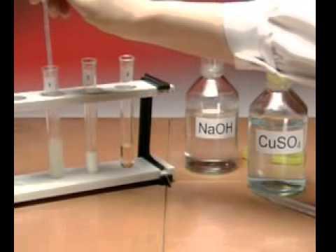 Biuret Test for Protein - A Level Biology