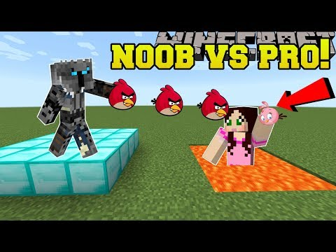 Minecraft: NOOB VS PRO!!! - ANGRY BIRDS! - Mini-Game