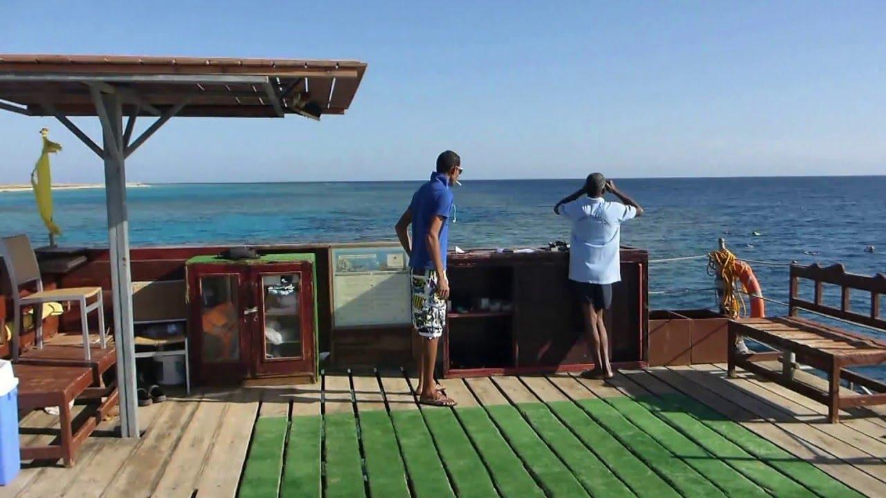Schnorcheln Am Gorgonia Beach Resort Hausriff März 2016