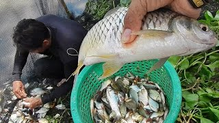 the best fishing many species fish in the nature river