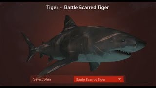 Depth - Tiger Shark game play
