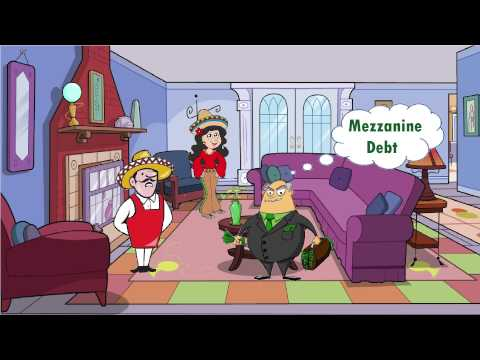 Mezzanine financing/subordinated debt