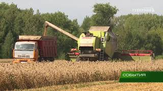 Продолжается уборка урожая 20 08 18