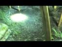 MOONLIGHT LUNAR FRESNEL LENS SOLAR PANEL PV PHOTOVOLTAIC NIGHT SOLAR ENERGY
