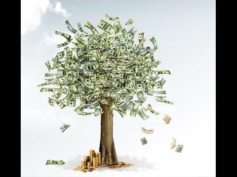 дерево денежное картинки