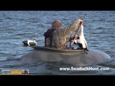 Layout Boat Hunting For Ducks.  Hunting Sea Ducks, With Capt. Ruben Perez !