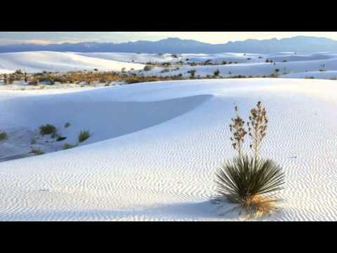 Nerve - White Sand