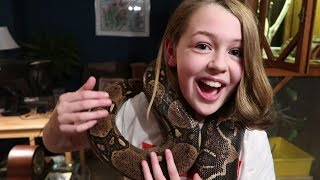 Why Snakes Make Great Pets For Kids Youtube