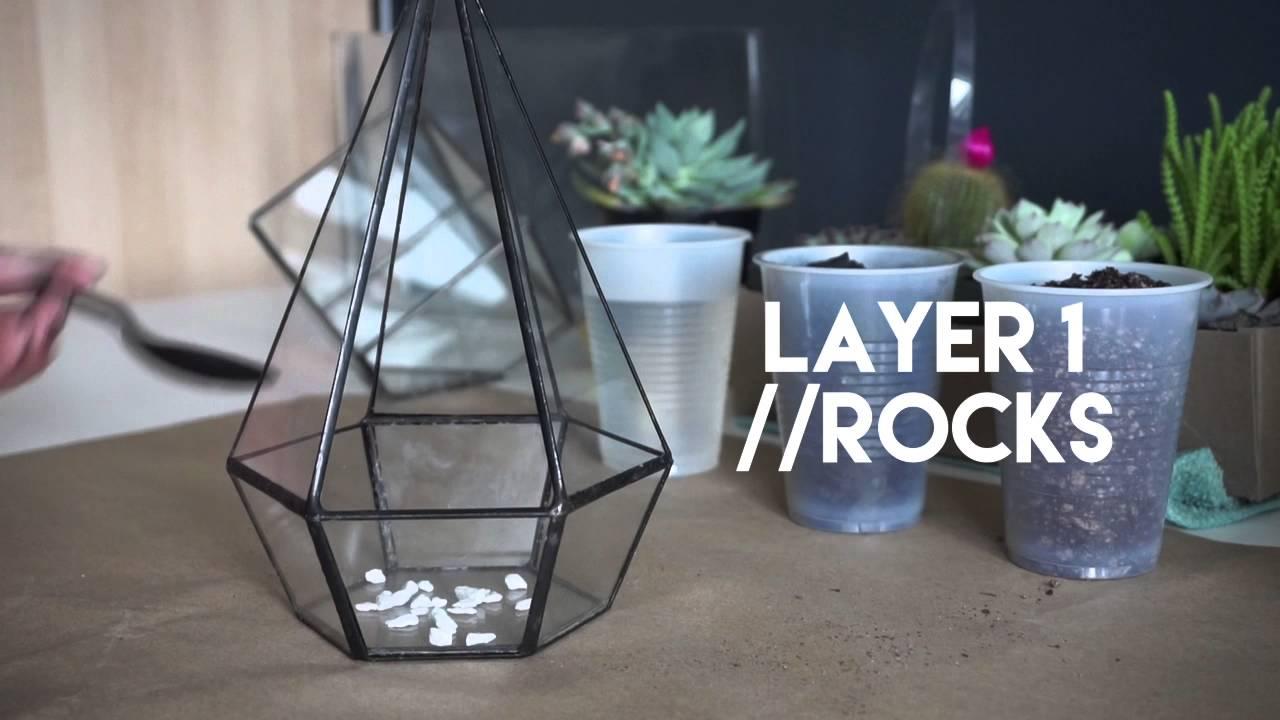 Planting Succulent Geometric Glass Terrarium Youtube