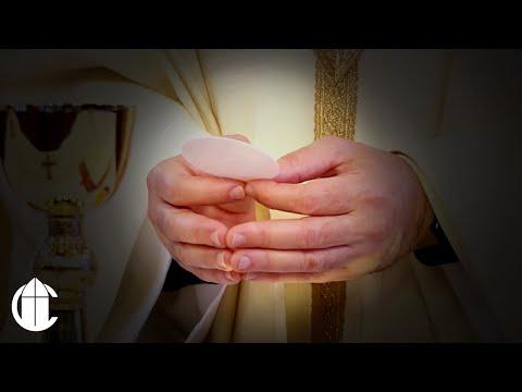 La Santa Misa | Séptimo Domingo de Pascua