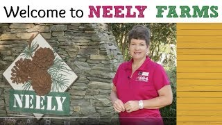 Neely Farms Tour | Simpsonville Neighborhoods - Melissa Patton